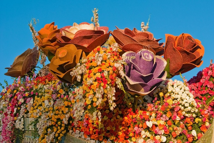 i wanna work on a Rose Bowl Parade float and then sit in great seat and watch the parade!