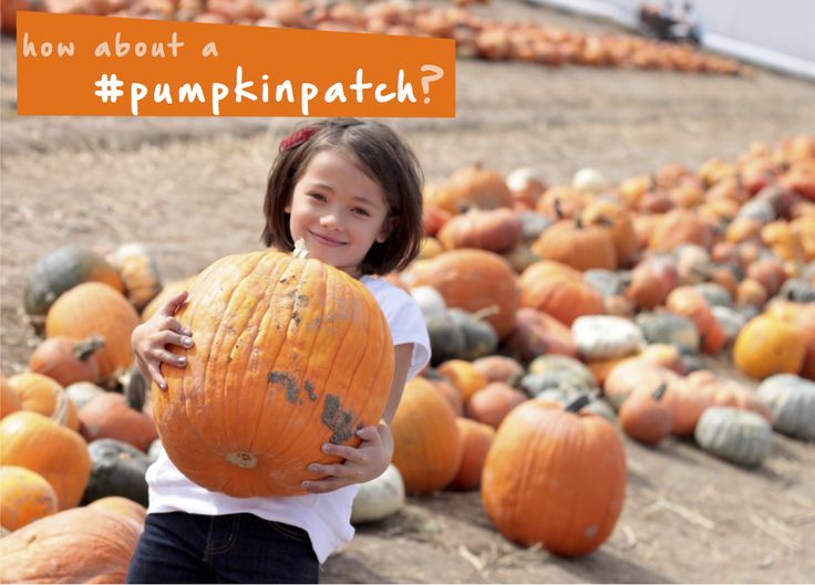 A trip to the #pumpkinpatch is so much fun for the whole family! Pick your own pumpkins to carve, both big and small