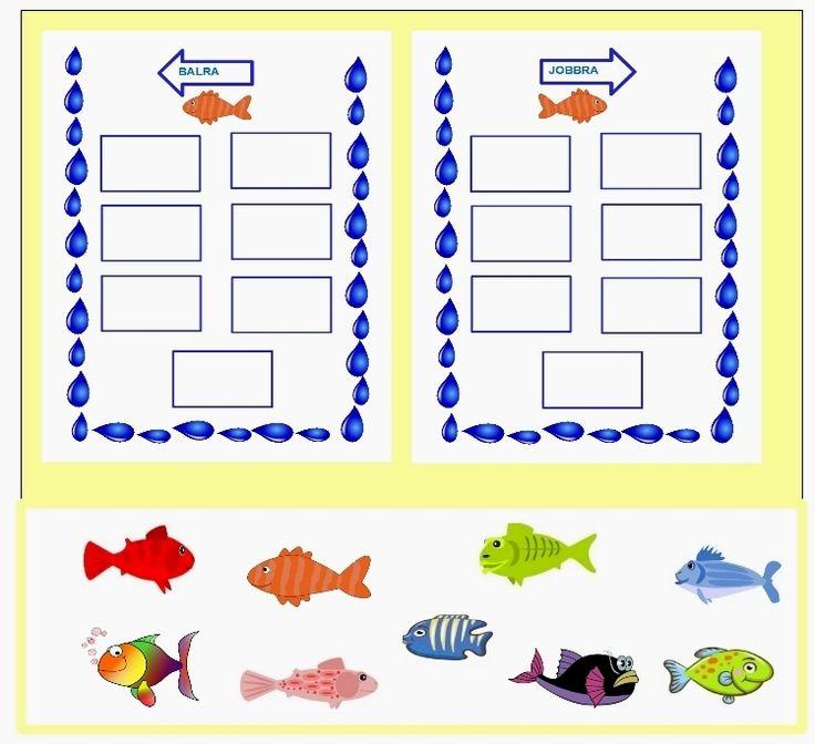 Merre úsznak a halacskák? Jobbra, vagy balra?