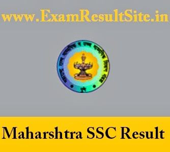 MSBSHSE 10th Class Exam Result 2014 Maharashtra Board SSC Exam Results