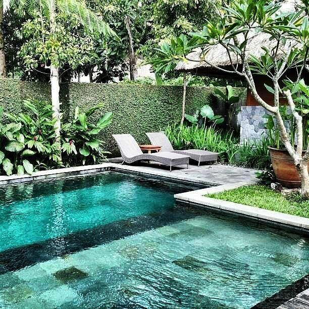 Inspiration Backyard Pool Designs Backyard Pool Courtyard Gardens Design