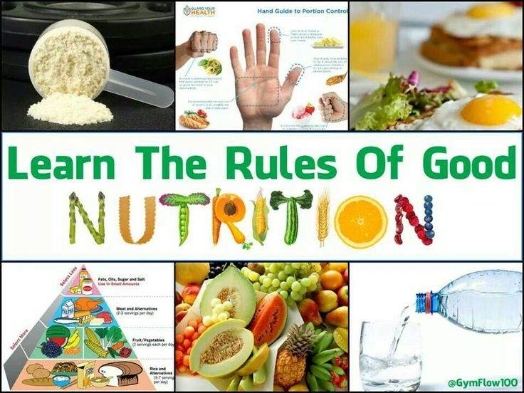 essay on diet for good health