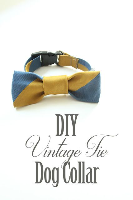Less-Than-Perfect Life of Bliss: DIY Vintage Bow Tie Dog Collar