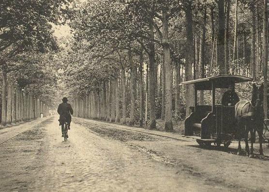 De Boschlaan rond 1910 met een paardentram in het Mastbos. De laan heet sinds 1927 de Burgemeester Kerstenslaan.