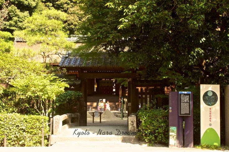 Ujigami Shrine and Kirihara-sui! entrance to the shrine over the sacred bridge!