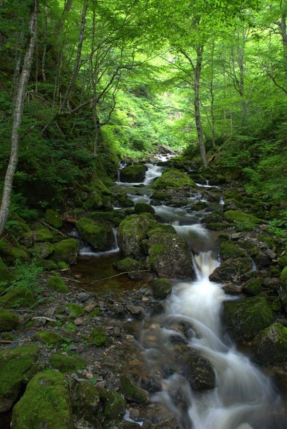 Uisage Ban Falls, Baddeck