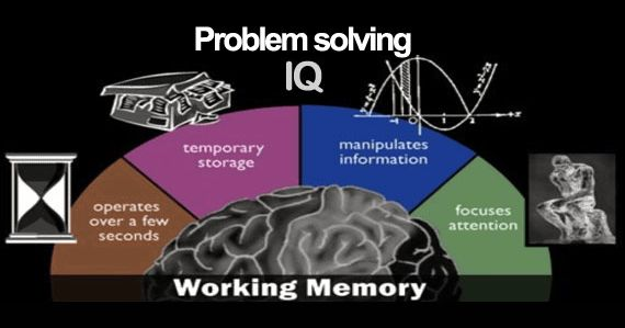 Как мозг решает математические задачи