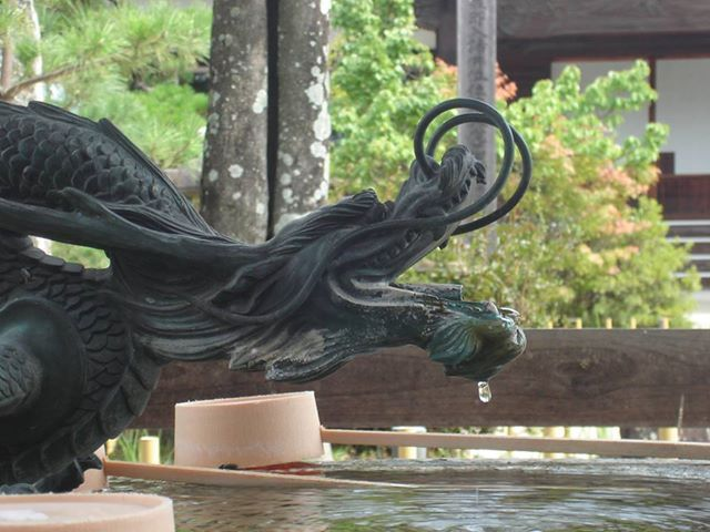 https://www.facebook.com/decasu?ref=hl  豊田市井上町にある大アベマキの近くの写真だそうです。  暑い夏でも涼しそうな龍の写真、上手に撮ってくれてありがとう!