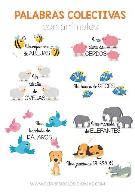 Palabras colectivas con animales (I) - El tarro de los idiomas - Recursos educativos, descargas. Inglés, español. MFL GCSE