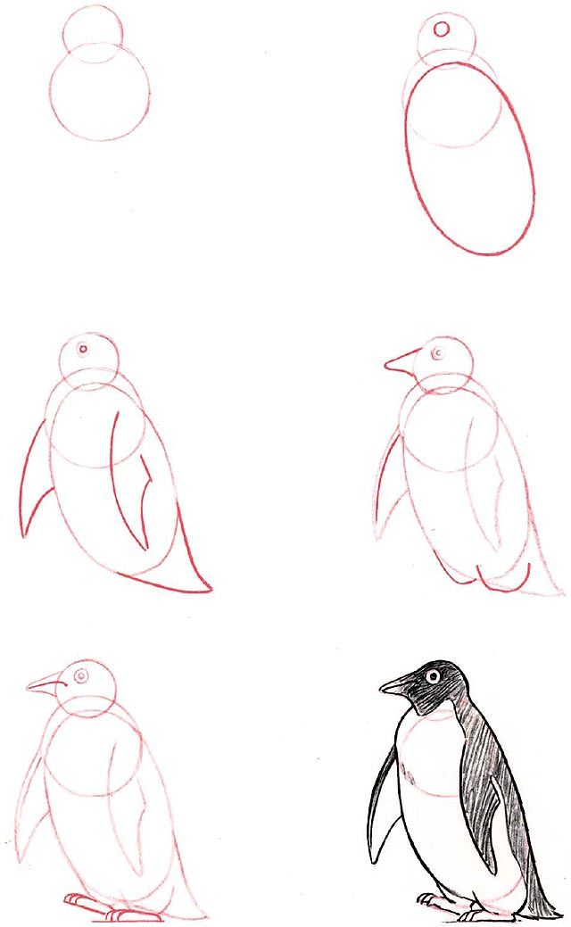 how to draw a penguin >,<