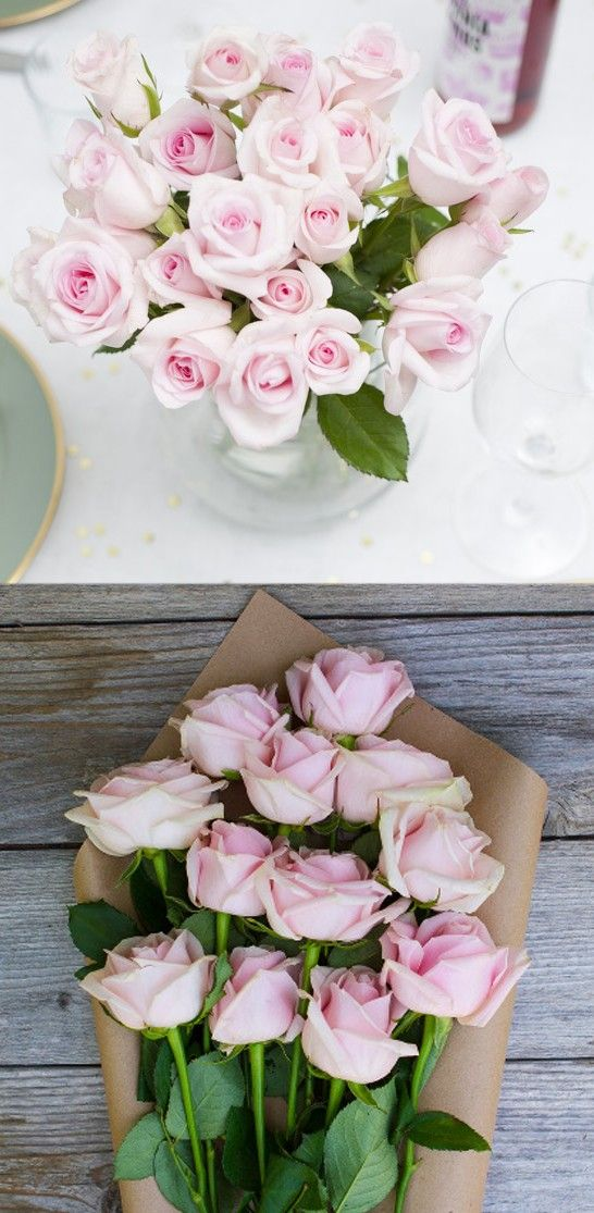 soft pink roses  ...so romantic