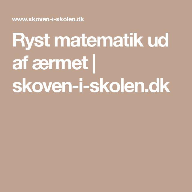 Ryst matematik ud af ærmet | skoven-i-skolen.dk