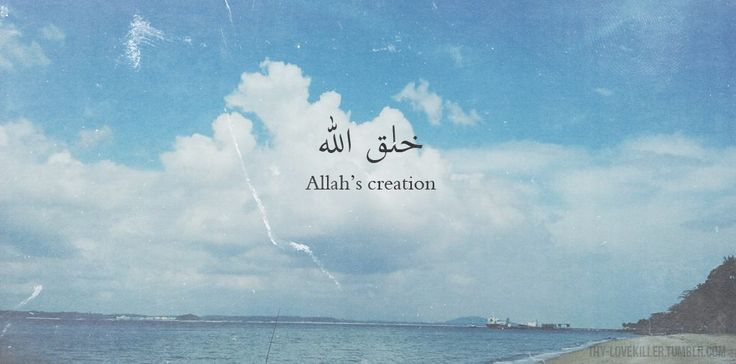 Subhanallah. Allah's creation is indeed beautiful. #islam #muslim #typography