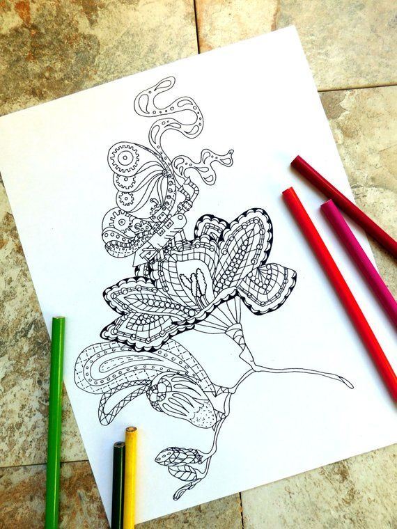 Butterfly Coloring Pages Steampunk Steampunk Coloring Page Coloring Page Butterfly Metal Gea Butterfly Coloring Page Steampunk Coloring Coloring Pages