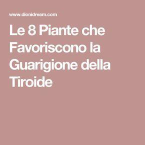 Le 8 Piante che Favoriscono la Guarigione della Tiroide