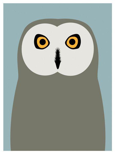 Short Eared Owl, Day