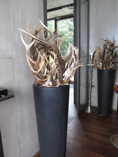 25 best ideas about deer antler decorations on pinterest - Home interior deer pictures for sale ...