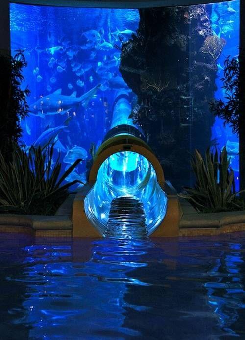 Wasserrutsche durch Hai-Becken in Vegas.