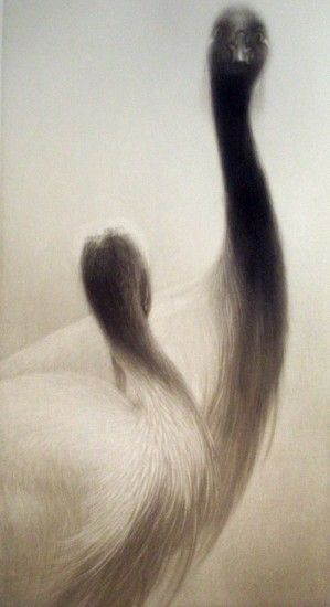 """Mikio Watanabe, """"Duo"""" Mezzotint 2013 Print Size: 19.75 x 13 in. Image size: 6.375 x 11.625 in. Signed, titled, numbered and dated in pencil. Edition: 90"""
