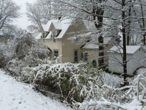 Buying cottages in Saugatuck this winter!