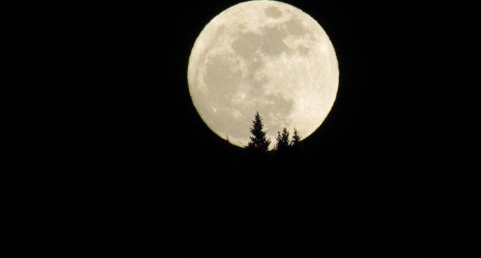 """Moon,"" Lily Bowers, Sparwood, B.C."