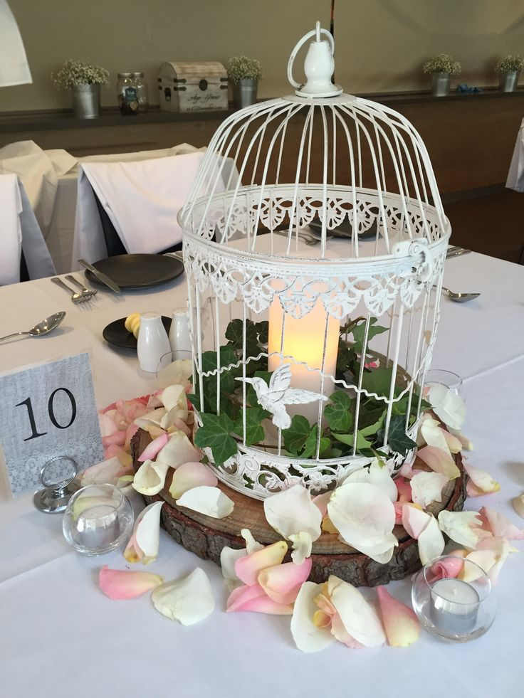 Centrepiece     Birdcage with pillar candle sitting on a tree trunk base complimented by fresh rose petals scattered around the base      Wedding reception     Wedding centrepiece     Wedding styling     Wedding decor