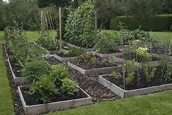 Raised Vegetable Garden Plans - Yahoo Image Search Results