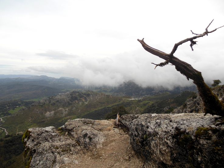 National Park,Andalucia