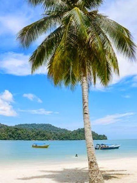 Exotic Beaches -BlueParadise
