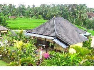 Ubud Rental Tripadvisor Travel Pinterest Gardens