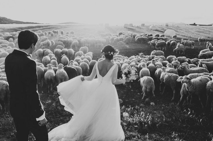 Junebug Weddings' Best Wedding Photos of 2015Photo by: Daniel Alonso | People Producciones Photo: Junebug Weddings