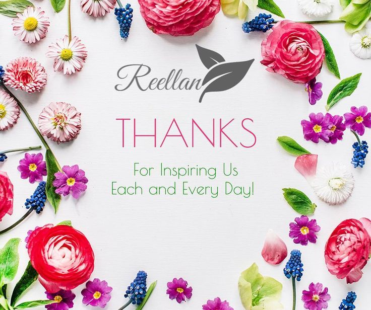 www.Reellan.com