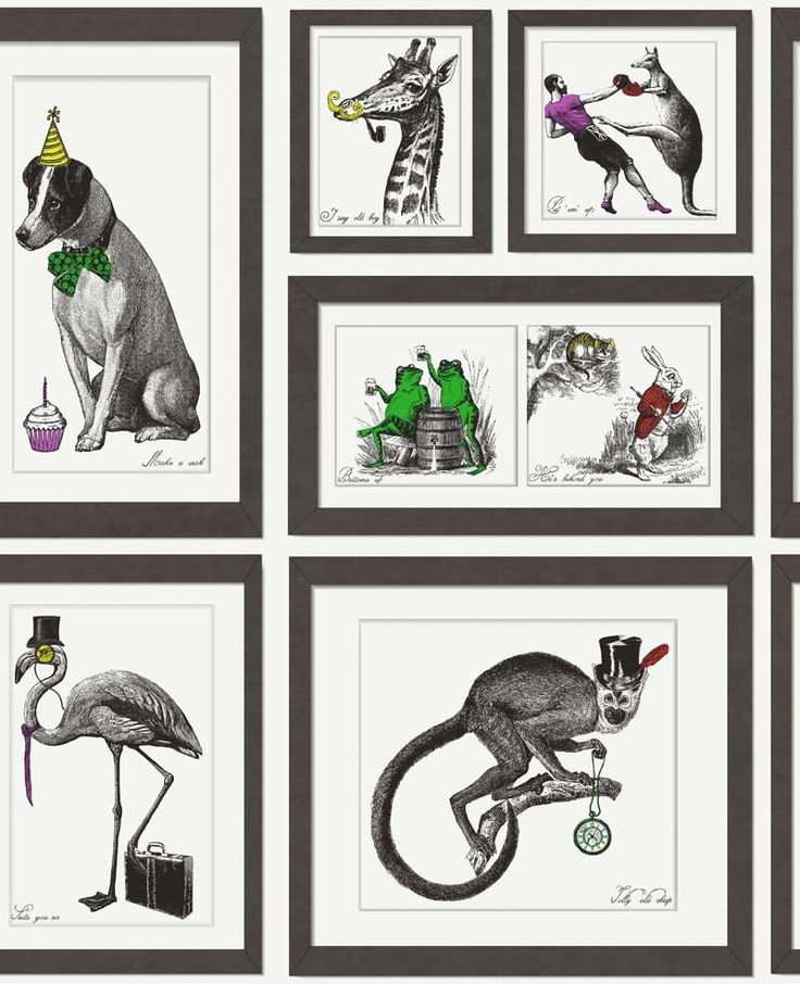 Holden Decor - Mad Dogs - Eccentric Frames - Smooth Wallpaper 97921 - FREE POST