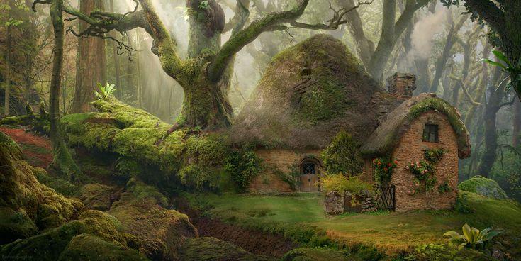 Forest_Dwelling.jpg
