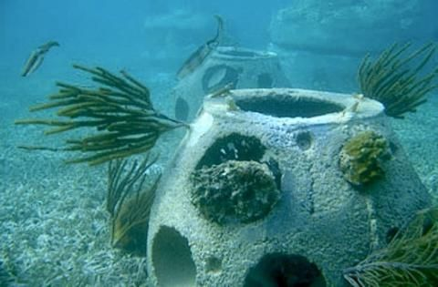 Get buried in a reef ball: A new twist on the sea burial helps to protect and restore fragile marine ecosystems. By Melissa Breyer