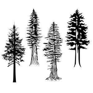 Pacific Northwest Washington State Tree Pack Cuttable Design Cut File. Vector, Clipart, Digital Scrapbooking Download, Available in JPEG, PDF, EPS, DXF and SVG. Works with Cricut, Design Space, Sure Cuts A Lot, Make the Cut!, Inkscape, CorelDraw, Adobe Illustrator, Silhouette Cameo, Brother ScanNCut and other compatible software.