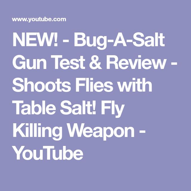NEW! - Bug-A-Salt Gun Test & Review - Shoots Flies with Table Salt! Fly Killing Weapon - YouTube