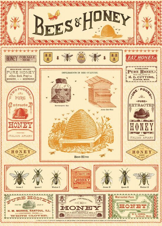 Vintage Look Bees & Honey Gift Wrap or Poster by Cavallini by SunchowdersVintage on Etsy https://www.etsy.com/listing/246852485/vintage-look-bees-honey-gift-wrap-or