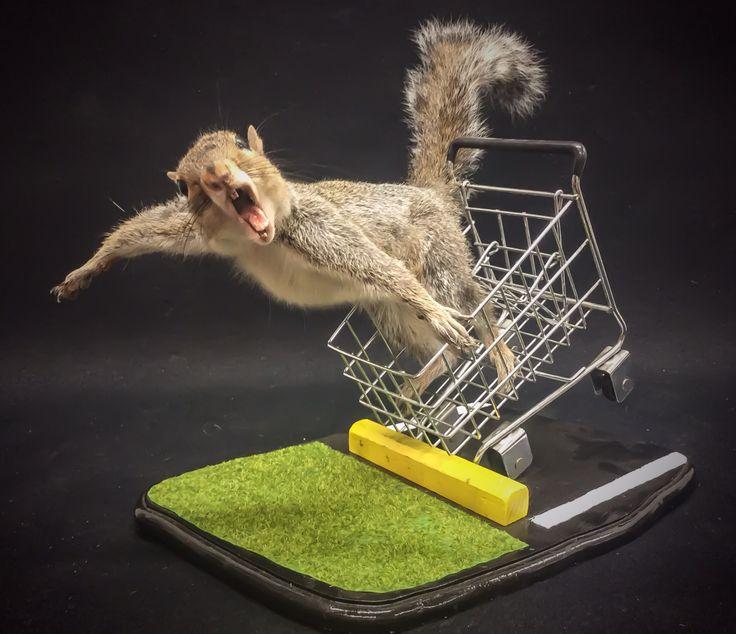 Mátame, camión! (El Tópic de la Taxidermia Chunga) - Página 3 C6996403d0ceab19fb632ef6ab379f0c--taxidermy-squirrels