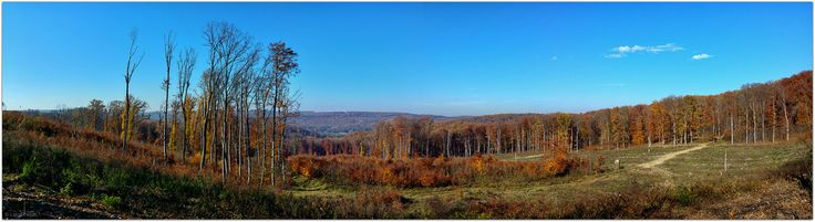 Ropoly Valley (Ropoly Völgy)