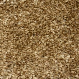 Special Buy Truly Soft I - Color Southern Road 12 ft ...