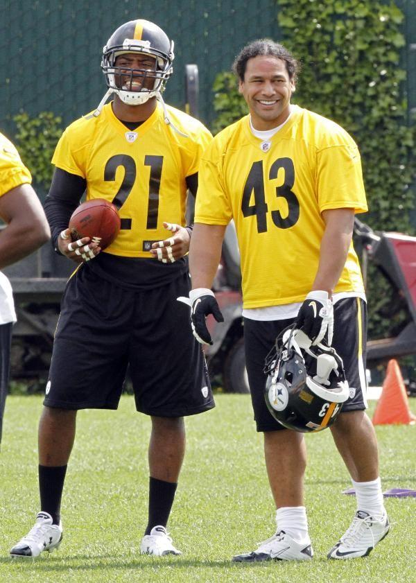 Troy Polalmalu and Ryan Clark are faggets