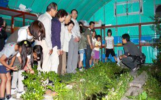 Tokoha University firefly hut