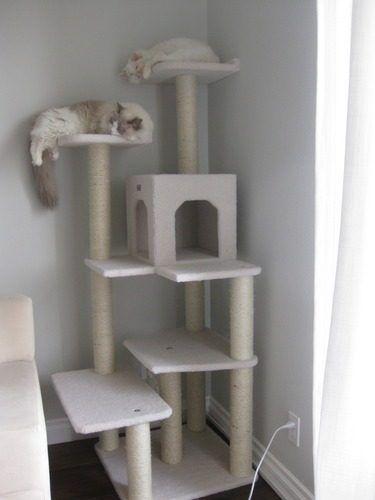 Gimnasio para gatos casero buscar con google mascotas - Sofas para gatos ...