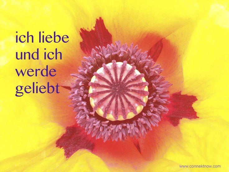 Positive Affirmation: ich liebe und ich werde geliebt  Uschi Nackenhorst www.connektnow.com