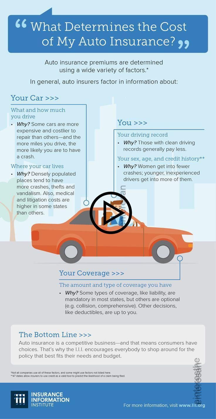 What Determines The Cost Of Your Auto Insurance With