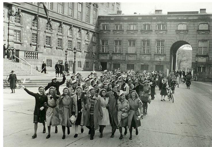 odense piger zoologiske museum københavn