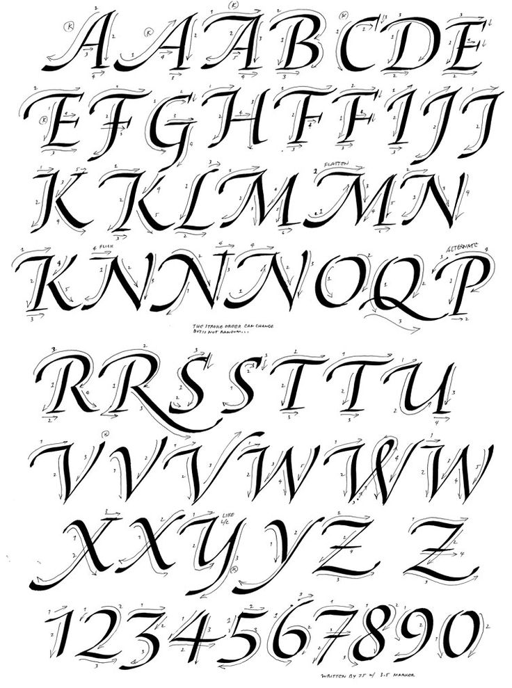 The 25 best italic font ideas on pinterest cursive b Calligraphy basics