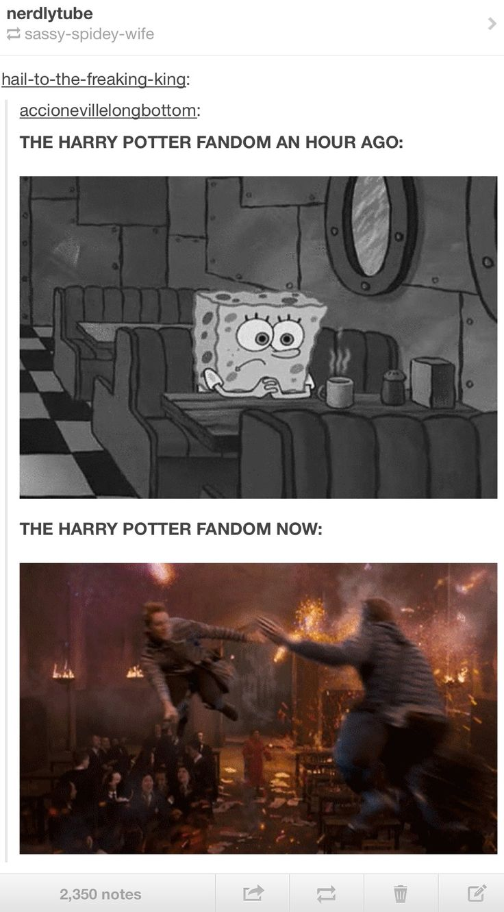 YES!!!!!!!!!!!!!!!!! FANTASTIC BEASTS AND WHERE TO FIND THEM!!!!!!!!!!!!