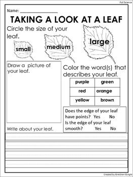 FREE: Fall Leaf Observation Sheet: Science Center Activity http://www.teacherspayteachers.com/Product/Fall-Leaf-Observation-Sheet-Science-Center-Activity-1462165